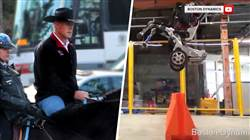 Highs and Lows: Interior secretary's horse-riding commute, super-skilled robot